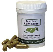 Insulate Plus - Herbal Diabetes Treatment