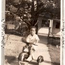 1940-50s Vintage Photo of Cute African-American Girl on Tricycle Black Americana