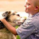 Cute Boy Dog Photo 8x10 Matte Color Snapshot Mohawk Children Unframed Original