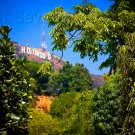 Hollywood Sign California 8x12 Photo Wall Art Print Color Original Picture USA