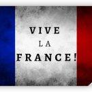 Vive La France 36x24 Color Poster Art French Flag Print