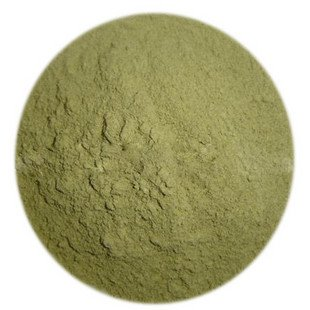 Ginkgo Biloba Powder
