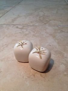 salt and pepper shakers by winfield ware handcrafted china