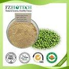 Green Bean Powder