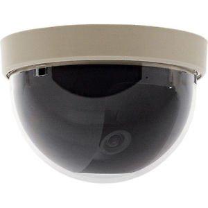 Mini Wall Mount Color Dome Camera (90mm Diameter)