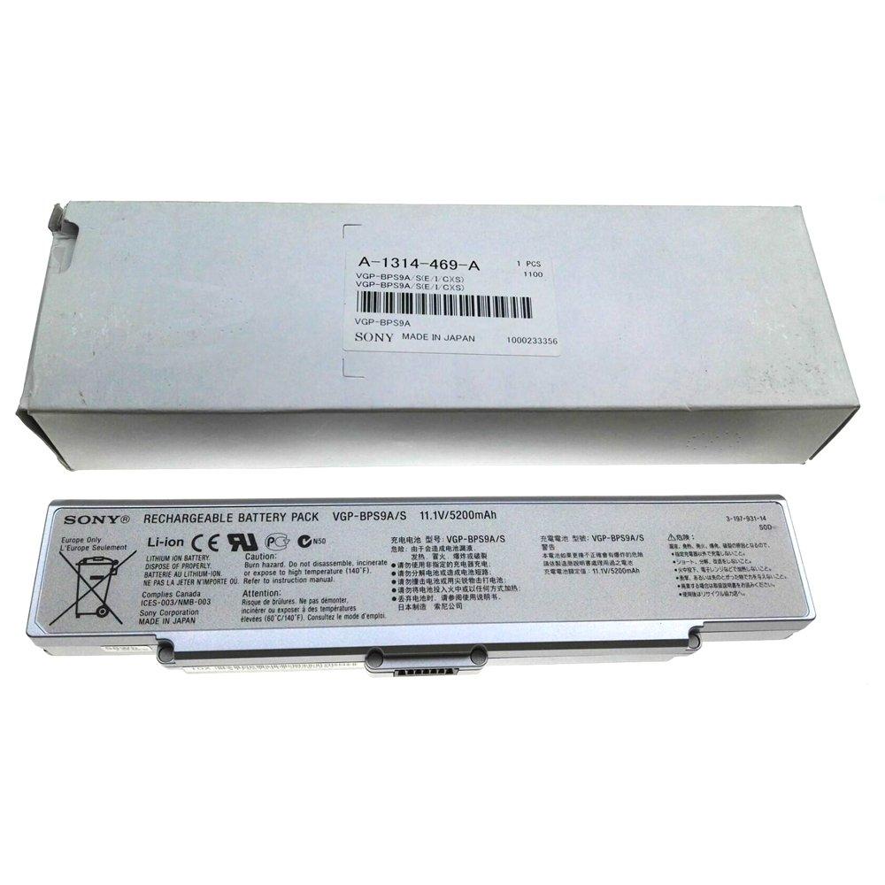 Sony VGP-BPS9A/S VAIO Additional Standard Li-ion Battery (Silver)