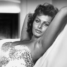 ACTRESS SOPHIA LOREN - 8X10 PUBLICITY PHOTO (AA-114)