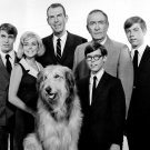 1967 CAST FROM THE TV SERIES 'MY THREE SONS' - 8X10 PUBLICITY PHOTO (AB-038)