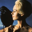 ACTRESS TIPPI HEDREN IN HITCHCOCK'S 'THE BIRDS' - 8X10 PUBLICITY PHOTO (NN-119)