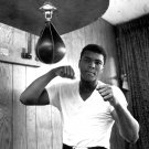 MUHAMMAD ALI LEGENDARY BOXER 'THE GREATEST' - 8X10 PUBLICITY PHOTO (ZY-145)