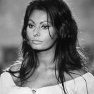 SOPHIA LOREN ACADEMY AWARD WINNING ACTRESS - 8X10 PUBLICITY PHOTO (DA-516)