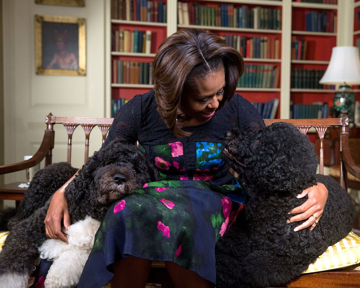 """FIRST LADY MICHELLE OBAMA WITH FAMILY DOGS """"BO"""" AND """"SUNNY"""" 8X10 PHOTO (EE-065)"""