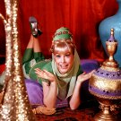 BARBARA EDEN IN 'I DREAM OF JEANNIE' - 8X10 PUBLICITY PHOTO (XEE-078)