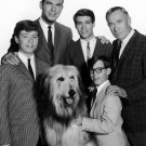 CAST FROM THE TV SHOW 'MY THREE SONS' - 8X10 PHOTO (ZZ-516)