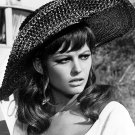 CLAUDIA CARDINALE IN THE FILM 'DON'T MAKE WAVES' - 8X10 PUBLICITY PHOTO (AB-146)