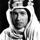 "PETER O'TOOLE IN THE FILM ""LAWRENCE OF ARABIA"" - 8X10 PHOTO (AB-153)"