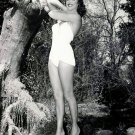 "JULIE ADAMS IN ""CREATURE FROM THE BLACK LAGOON"" - 8X10 PUBLICITY PHOTO (CC-171)"