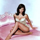 RAQUEL WELCH ACTRESS AND SEX-SYMBOL - 8X10 PUBLICITY PHOTO (AZ224)