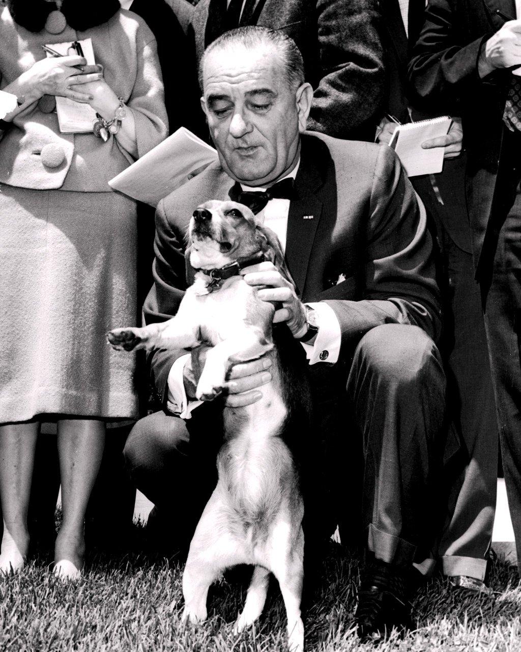 "PRESIDENT LYNDON B. JOHNSON WITH PET BEAGLE ""HIM"" - 8X10 PHOTO (BB-183)"