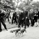 "PRESIDENT LYNDON B. JOHNSON WALKS PET BEAGLES ""HIM"" & ""HER"" 8X10 PHOTO (DA-024)"