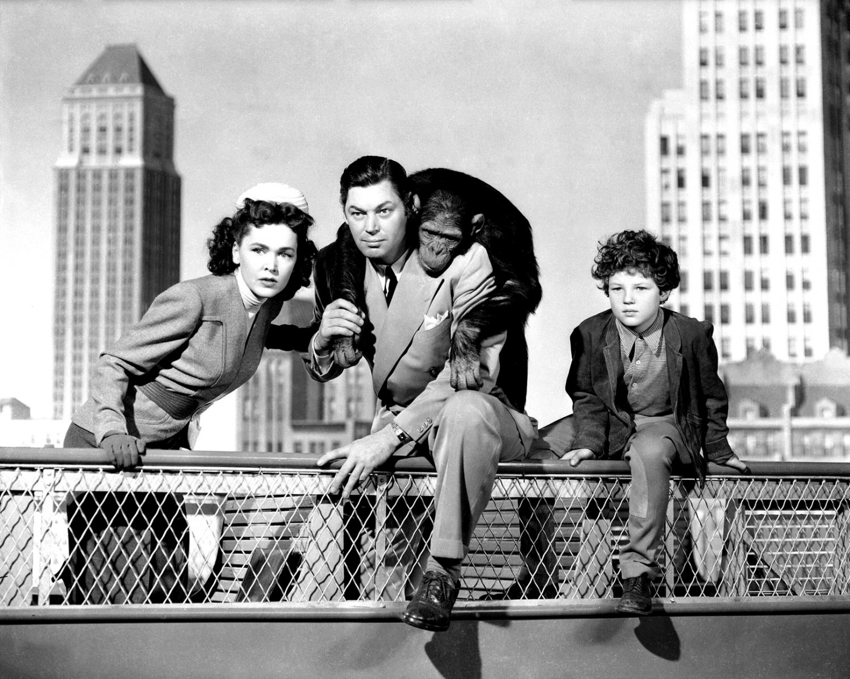 "JOHNNY WEISSMULLER & MAUREEN O'SULLIVAN IN ""TARZAN'S NEW YORK ADVENTURE"" 8X10 PHOTO (AB-202)"