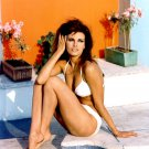 RAQUEL WELCH ACTRESS AND SEX-SYMBOL - 8X10 PUBLICITY PHOTO (SP-001)