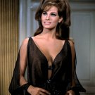RAQUEL WELCH ACTRESS AND SEX-SYMBOL - 8X10 PUBLICITY PHOTO (SP-004)