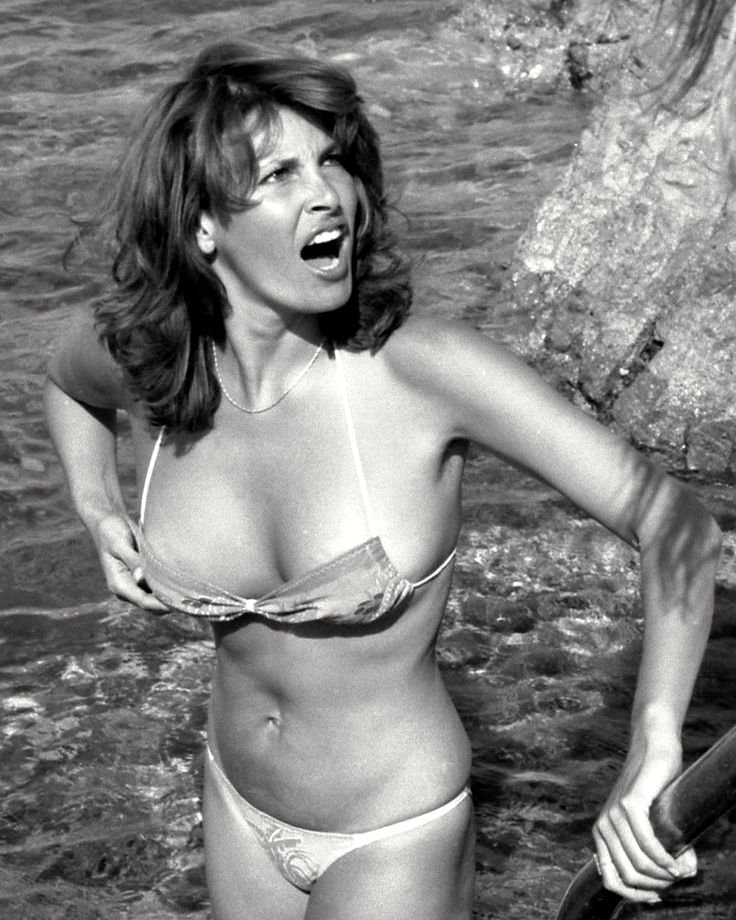 RAQUEL WELCH ACTRESS AND SEX-SYMBOL - 8X10 PUBLICITY PHOTO (SP-014)