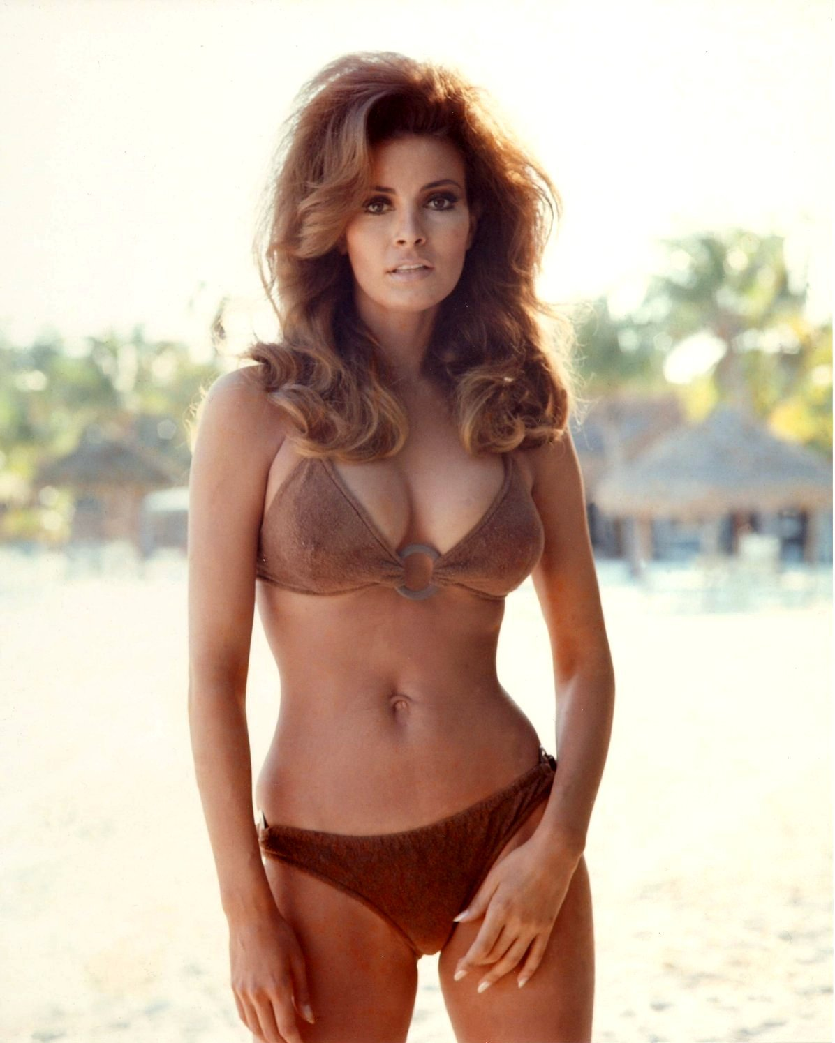 RAQUEL WELCH ACTRESS AND SEX-SYMBOL - 8X10 PUBLICITY PHOTO (SP-020)