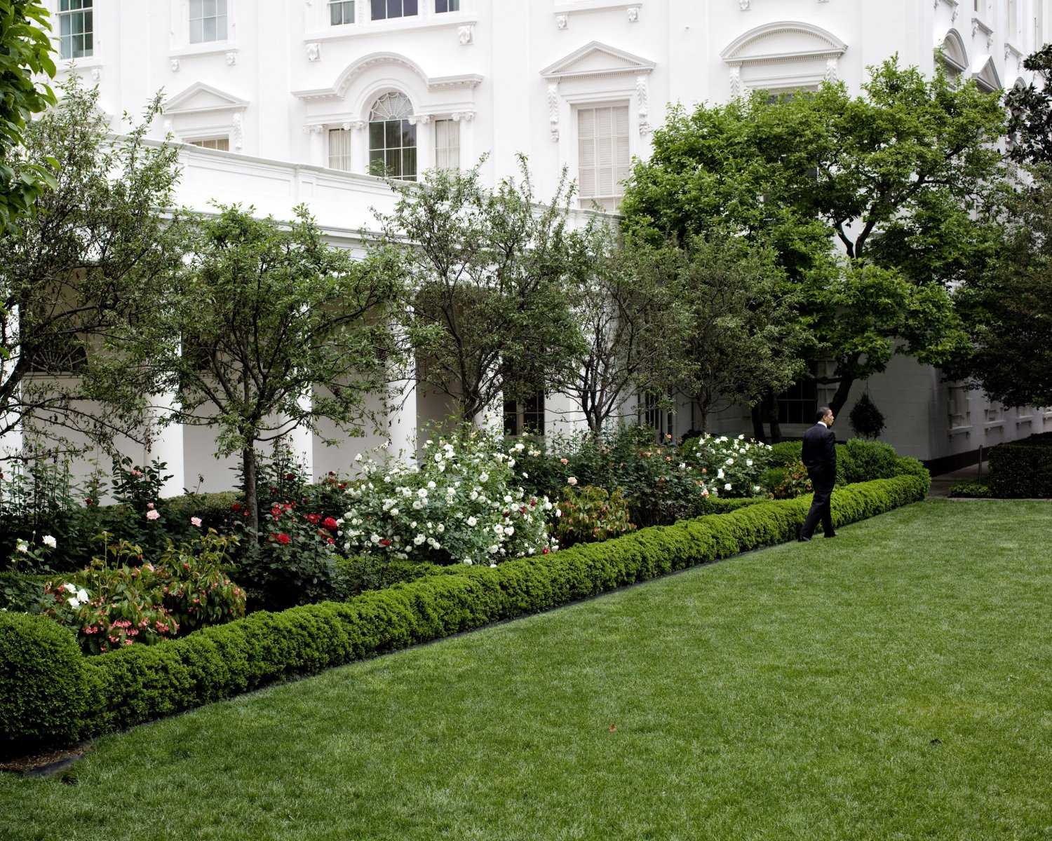 BARACK OBAMA STROLLS THROUGH WHITE HOUSE ROSE GARDEN IN 2009 8X10 PHOTO (ZY-626)