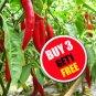 100 Seeds Red Thai Chili Pepper Very Hot Oganic Heirloom For Plant Garden (#B 3 G 1 Free)