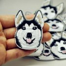 1PC Husky Dog Embroidery Iron Patches In Patch Applique Badge Sewing Clothes FT