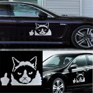 For Auto Car Bumper Window DIY Funny Grumpy Cat  Vinyl Decal Sticker Decal FT68