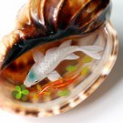 White Koi in the trumpet shell resin painting
