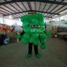 Free Shipping Green Grape Mascot Costume for Adult Halloween costume