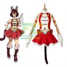 Free Shipping My Hero Academia Boku no Hero Akademia Pussycats Cosplay Costume