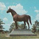 Man O' War Statue Postcard Kentucky Thoroughbred Horse