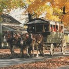 Greenfield Village Postcard Horse and CarriageAutumn Michigan