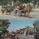 Carriage Horses Postcards Lot of 2 New Orleans Bahames