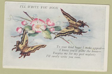Postcard I'LL WRITE YOU SOON Vintage Floral Butterfly Apology