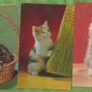 Three Kittens Postcards Cats Felines Vintage