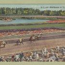 HIALEAH PARK  POSTCARD VINTAGE HORSE RACING LINEN