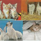 Vintage Postcard Lot Cats and Kittens Bunny Rabbit Chrome