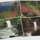 Hawaii Postcards Waimea Kauai Waterfall Scenic Floral
