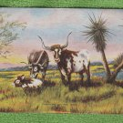 Texas Longhorns Vintage Postcard Ranch Linen