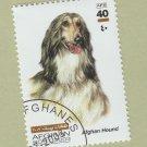 Afghan Hound Dog Art Postage Stamp Canine Portrait