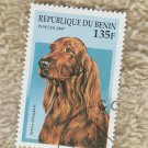 Irish Setter Dog Stamp Republique du Benin 1997