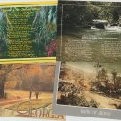Scenic GEORGIA State Postcards Chrome Street Scenes