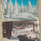 Winter Scenic Post Cards Lot of 4 Snow Skiing Cabins