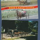 Horse and Buggy Postcards Amish, Mackinac, Carriage
